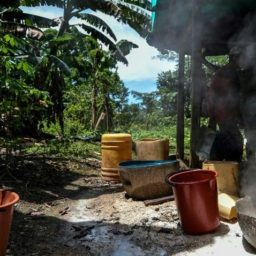 Colombia Sees Biggest Cocaine Boom Ever After Deal with FARC Communists