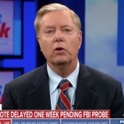 Graham Calls for an FBI Investigation into Dems 'Despicable Process' Including Feinstein's Office