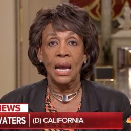 Maxine Waters:Trump 'Has Displayed the Most Despicable Behavior That Any Human Being Could Do'