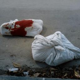 Mexican Cartel Gunmen Dump Murdered Marines in Cancun
