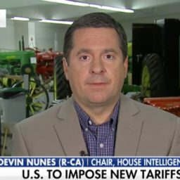 Nunes: 'I Expect' to Release Russia Probe Documents Before Election