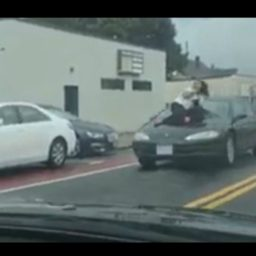 VIDEO: People Cling to Hood of Moving Car in Road Rage Incident