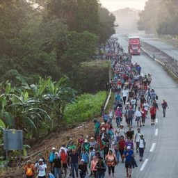 Border Patrol Council Chief Brandon Judd: Army Cannot Stop Migrant Caravan; Only Wall, New Laws