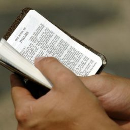 College Offers Credit Course on 'Queering' the Bible