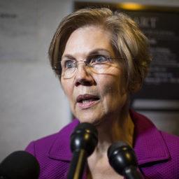 Elizabeth Warren Releases DNA Test Showing 0.1-3.1% Native Ancestry