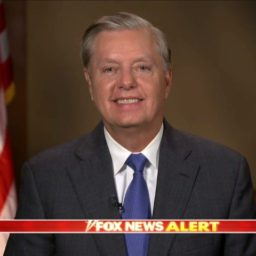 Graham: The 'Hirono Standard' Is Horrific — The People of South Carolina Gave Me My Voice, Not the Senator from Hawaii
