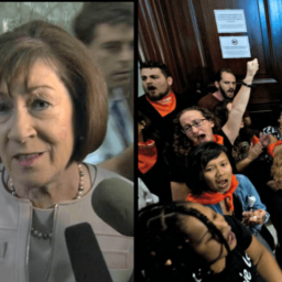 Maine GOP Chairwoman: Susan Collins and Her Staff Bullied by Leftists