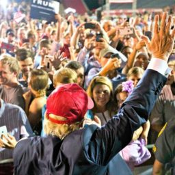 Nolte: Donald Trump More Popular than Media Want You to Believe