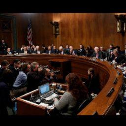 Trump and Senate Break Judicial Record, Press Forward Ahead of Midterms