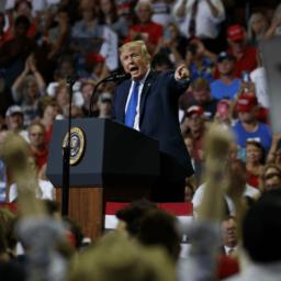 Watch Live: Donald Trump Hosts Rally in Mesa, AZ