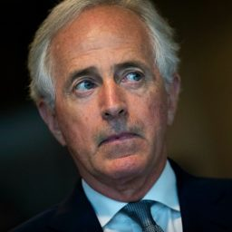 Bob Corker Will Not Rule Out Primarying Donald Trump in 2020