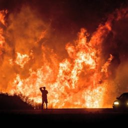 California Democrats will Join Donald Trump to View Wildfire Destruction