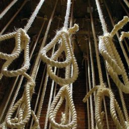 Iran Executes 'Sultan of Coins' Convicted of Currency Hoarding