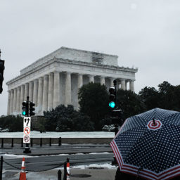 Photos: Washington, D.C. Hit with First Measurable November Snowfall in 22 Years