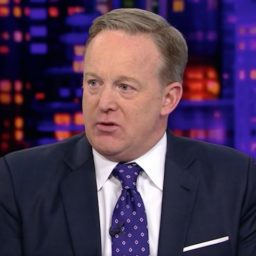 Sean Spicer: Nothing Will Get Done with Democrats in Control of the House