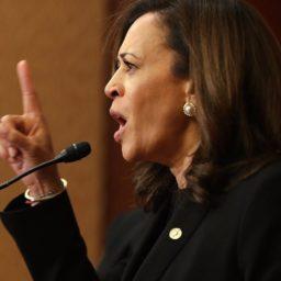WATCH: Senator Kamala Harris Grills Nominee to Lead ICE, Compares Agency to the KKK