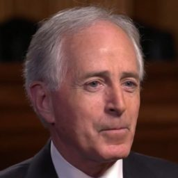 Corker on 2020: Dems Not 'Capable of Electing a Centrist'; 'Let's See What Happens a Year from Now'