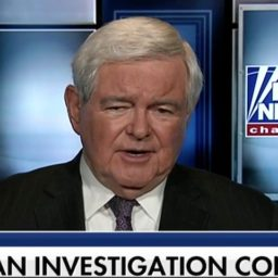 Gingrich: 'The Democratic Party Is Refusing to Protect Americans'