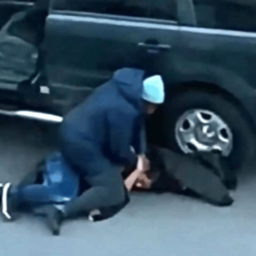 VIDEO: Mom Takes Down Would-Be Carjacker in NYC