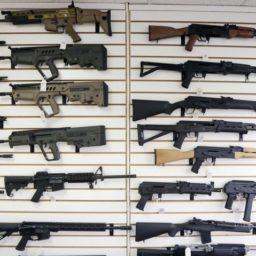 California Democrats Reintroduce Gun Rationing Under Gov. Newsom
