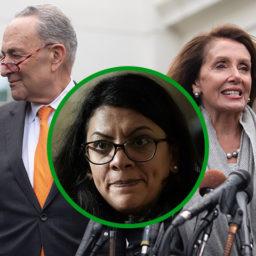 NY Assemblyman Calls Out Pelosi, Schumer for Silence on Rashida Tlaib Praising Radical Jew Haters