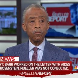 Al Sharpton: 'This Is a Clear Day of Victory for the President'
