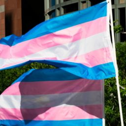 Democrats Display Transgender Flags Outside of Capitol Hill Offices: 'Under Attack from the Current Administration'