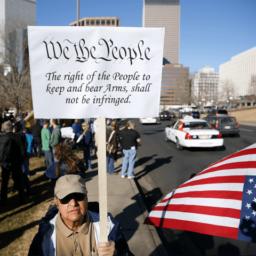 Illinois Democrat Pushes Ban on '2nd Amendment Sanctuary' Declarations