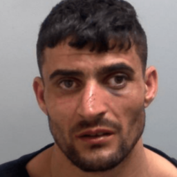 UK: Romanian Migrant Sentenced for Kicking Mother of Two to Death at Bus Stop