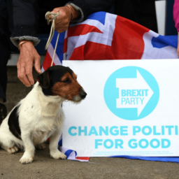 Poll: Brexit Party Could Win up to 252 Seats if Tories Back Remainer Candidate