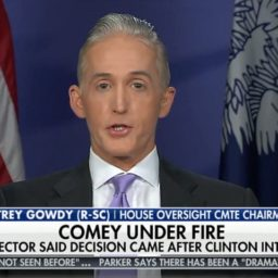 Gowdy: Mueller 'Clearly Didn't Write the Report'
