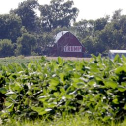 American Farmer Support for Trump Rises Despite China's Tactics