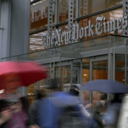 'Douche Zest': New York Times Politics Editor Describes What His Newspaper Publishes