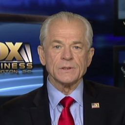 WH's Peter Navarro: 'This Economy Is Solid as a Rock'