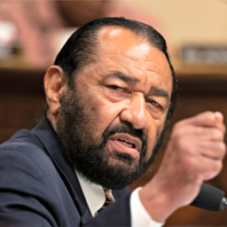 Al Green Perpetuates 'Fine People' Hoax in Hearing on White Nationalism