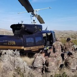 Large Group of Guatemalans in Camouflage Caught After Sneaking into Texas
