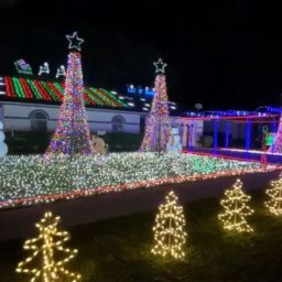 Mom Says Christmas Light Display Inspired Nonverbal Autistic Daughter to Speak