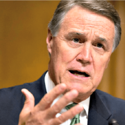 GOP Sen. Perdue: Impeachment Articles 'the Fruit of a Poisonous Tree'