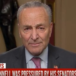 Schumer: If We Don't Get Witnesses, 'It Will Make the Value of an Acquittal Zero'