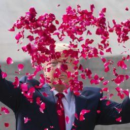 Pics: In India, Donald Trump Scatters Flower Petals at Gandhi Memorial