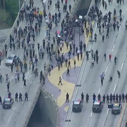 Protesters Block 110 Freeway in Los Angeles, Police Officer Attacked