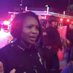 Watch: Dallas Police Chief Tells Rioters to Stop Attacking Police