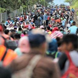 Proposed Democrat Platform Gives U.S. Asylum to the World's Migrants