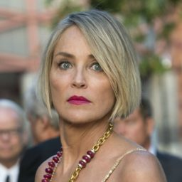 Sharon Stone Tweets: 'Trump Fears Next Election Will be Decided by Americans'