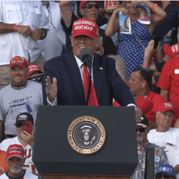 WATCH: Woman Standing Behind President Trump at Rally Rips Apart Photos of Democrat Lawmakers