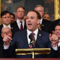 Lee Zeldin: Every State Legislature Should Enact 'Voter ID and Signature Verification'