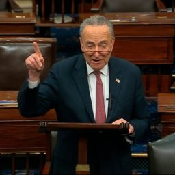 Schumer: We Can 'Expand' District, Circuit Courts to Balance out GOP Judges