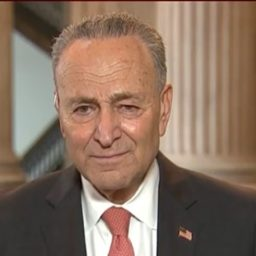 Schumer: We'll Move on COVID Relief without GOP if Need Be, 'Must Get It Done Quickly'