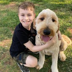 Boy Raises $13K to Help Girl Battling Cancer Get Service Dog