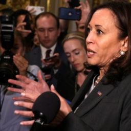 Democrats, Establishment Media Crushed by Senate Republicans Blocking Elections Takeover Bill